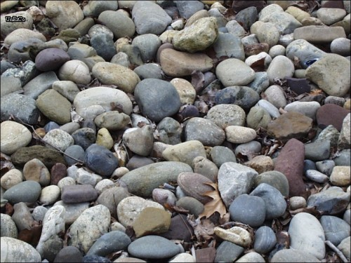 Rocks